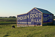 Dr Morse's Indian Root Pills, Morpeth, New South Wales, Australia