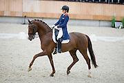 Madeleine Witte Vrees - Cennin<br /> KNHS Indoorkampioenschappen 2016<br /> © DigiShots