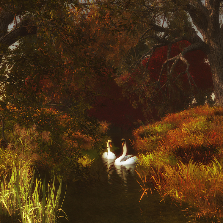 For those who love nature scenes, this image depicting two swans in a forest is certainly going to take your breath away. These two swans have been together for a long time. We can imagine this easily. We can imagine the journey that has brought them to this moment in time. Through all of it, they have remained together. They are here to appreciate the extraordinary beauty of their surroundings together. This is an image that has the ability to captivate almost anyone. The details are going to capture your attention. Available as canvas wall art or as framed wall art.