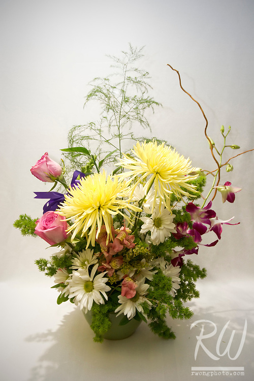 Chrysanthemum and Orchid Flower Arrangement with Porcelain Vase; ColorsMakesFlowers.com