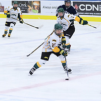 5th year defender Alexis Larson (22) of the Regina Cougars in action during the Women's Hockey Homeopener on October 7 at Co-operators arena. Credit: Arthur Ward/Arthur Images