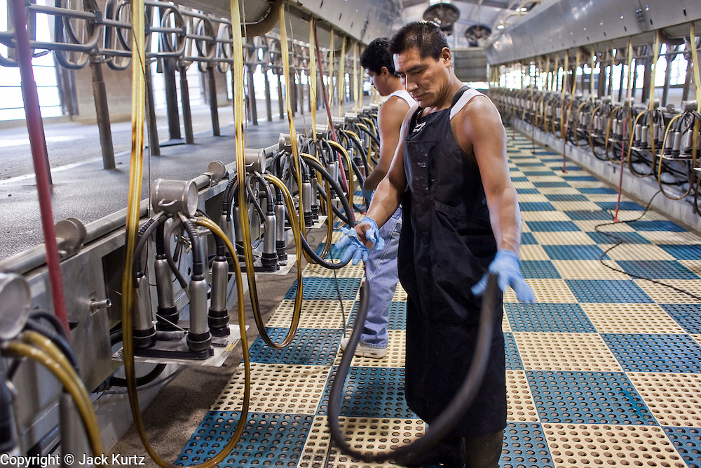 31 JULY 2009 --  BUCKEYE, AZ: Daniel Lopez (CQ) FOREGROUND and Juan Jose Aguilera (CQ) employees at Pylman Dairy, take apart the milking machines in the milking barn before the auction on the former Pylman Dairy Farm in Buckeye. The auction was handled by Overland Stockyards from Hanford, CA. The Arizona dairy industry is struggling to survive the worst milk economy some have ever seen. Due to the global recession, overseas demand for Arizona dairy products has plummeted, forcing prices down while production costs have stayed stable or gone up. For every $1 dairymen earn from milk sales, it cost them $1.50 to produce the milk. Photo by Jack Kurtz