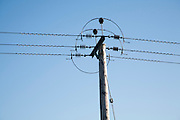 Close up of electricity cables and telegraph pole against blue sky, UK