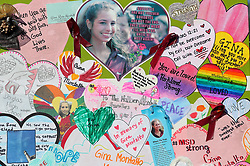 The Hearts Art Project at Pine Trails Park in Parkland, FL, USA, commemorates all 17 of the victims killed last year at Marjory Stoneman Douglas High School. Photo by Mike Stocker/Sun Sentinel/TNS/ABACAPRESS.COM