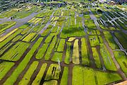 Nederland, Noord-Holland, Gemeente Oostzaan, 14-06-2012; Polder Oostzaan, gezien naar het lintdorp Oostzaan. De verkaveling in het gebied is het resultaat van veenontginning. .Polder and village Oostzaan, north of Amsterdam. The division in plots in the area is the result of peat extraction..luchtfoto (toeslag), aerial photo (additional fee required);.copyright foto/photo Siebe Swart