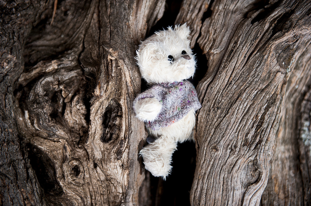 A teddybear  at Moria camp, Lesvos, Greece.