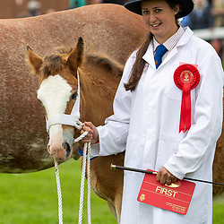 Great Yorkshire Show Galleries