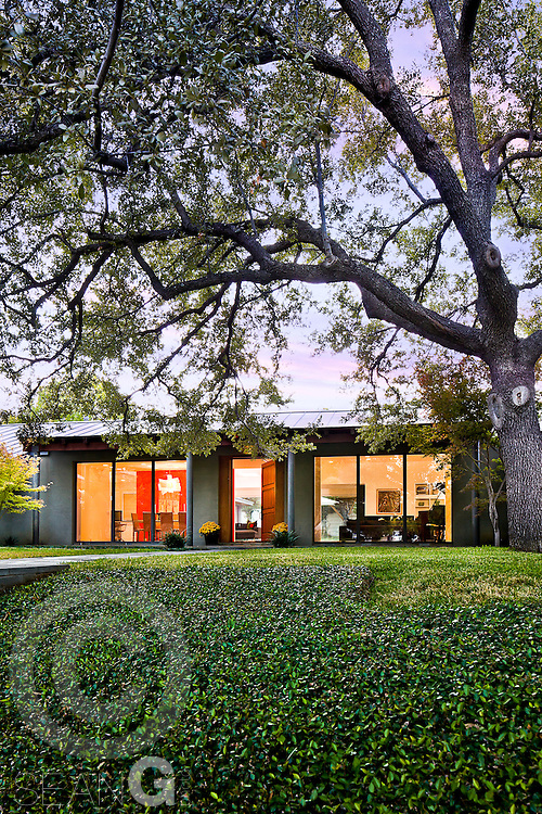 Contemporary home exterior under large live oak tree at sunset.