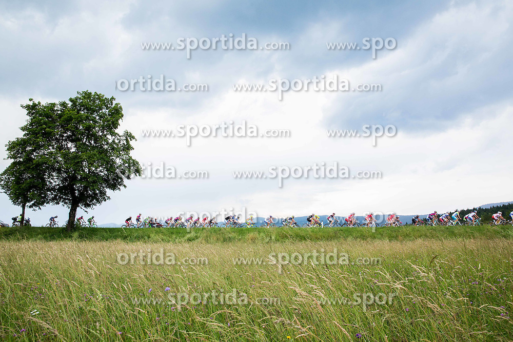 Peleton during Stage 2 of 21st Tour of Slovenia 2014 - cycling race 160,7 km  from Ribnica to Kocevje, on June 20, 2014 in Slovenia. Photo By Vid Ponikvar / Sportida