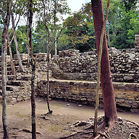 Architectural Platforms at Mayan Ruins in Coba, Mexico<br />