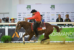 Bernard Fonck, (BEL), Sail On Top Wizard - Team Competition and 1st individual qualifying  - Alltech FEI World Equestrian Games™ 2014 - Normandy, France.<br /> © Hippo Foto Team - Dirk Caremans<br /> 25/06/14