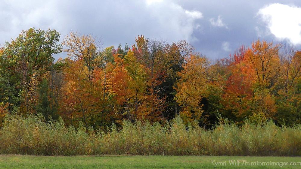 North America, USA, Vermont.
