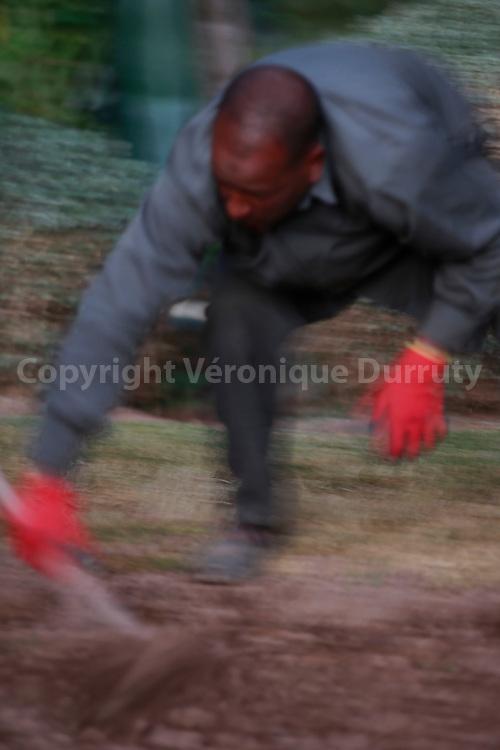 jardinier de Dar Ahlam;, Skoura, Maroc Sud // Gardener of Dar Ahlam;, Skoura, Souhern Morocco