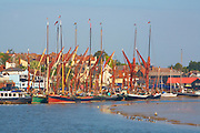 Great Britain England Essex Maldon River Blackwater Hythe Quay Traditional Thames Sailing Barges tied up at Quay.