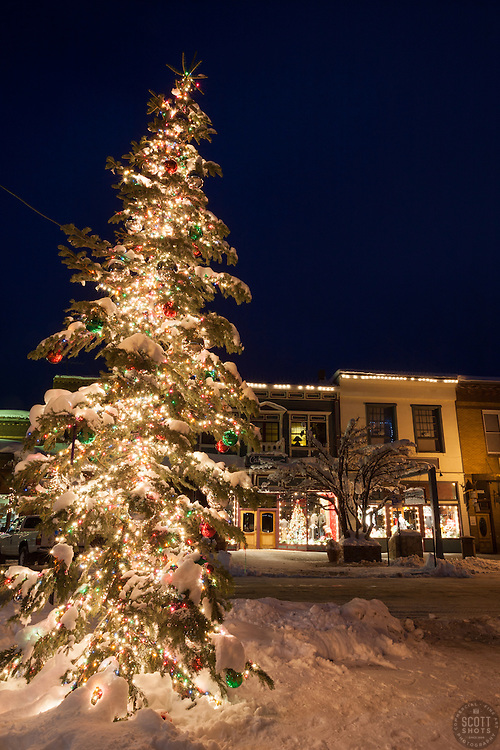"""""""Snowy Christmas Tree in Truckee 4"""" - This snow covered Christmas tree was photographed in Downtown Truckee, California."""