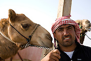 Al Ain, United Arab Emirates (UAE).February 2nd 2009..A camel's market