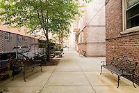 Garden Patio at 120 Bennett Avenue