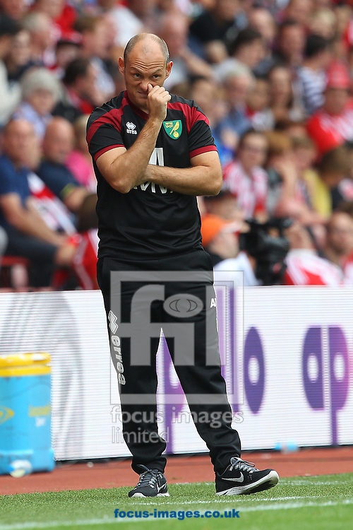 Norwich Manager Alex Neil during the Barclays Premier League match at the St Mary's Stadium, Southampton<br /> Picture by Paul Chesterton/Focus Images Ltd +44 7904 640267<br /> 30/08/2015
