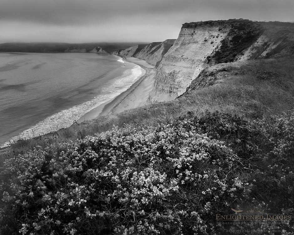 Cliffs overlooking Drakes Beach, Point Reyes National Seashore, Marin County, California