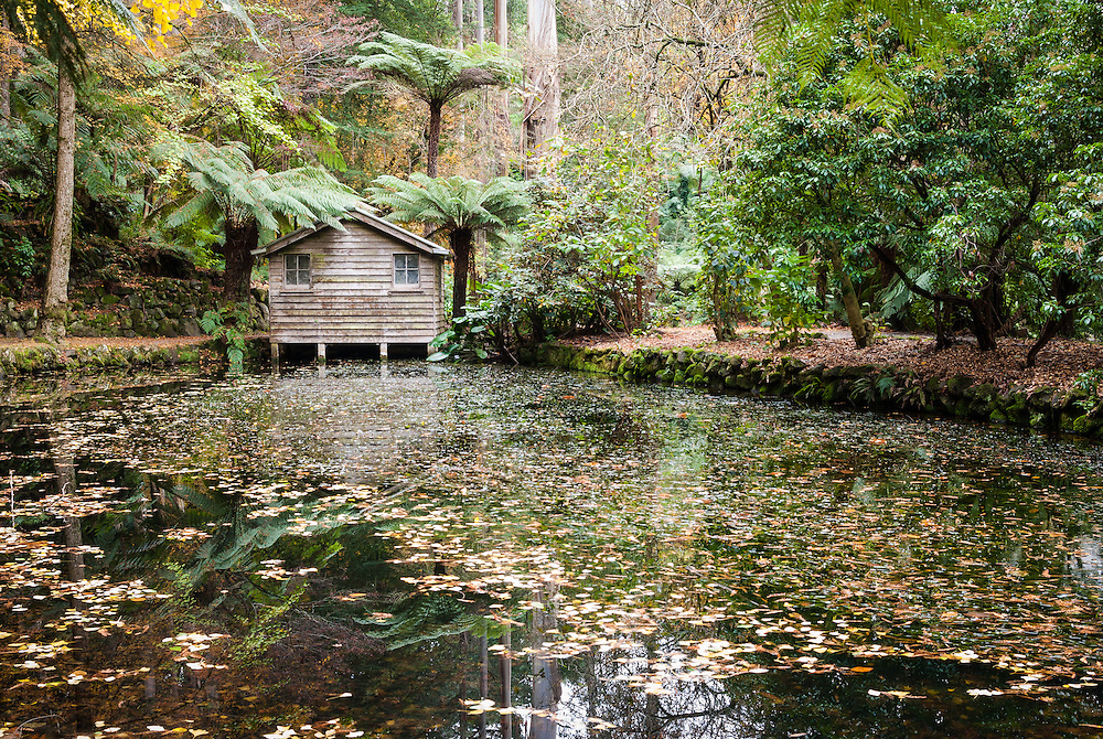 Boatshed and lake at Alfred Nicholas Memorial Gardens in the Dandenong Ranges