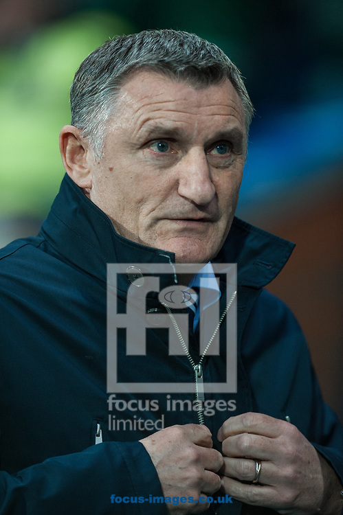 Blackburn Rovers manager Tony Mowbray during the Sky Bet League 1 match at Ewood Park, Blackburn<br /> Picture by Matt Wilkinson/Focus Images Ltd 07814 960751<br /> 29/03/2018