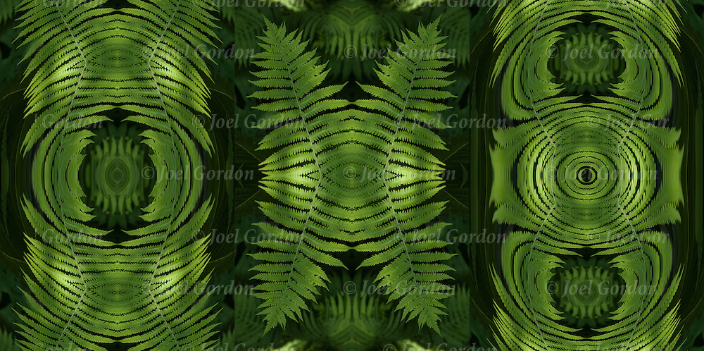 Three images of colorful green fern plant foliage, a photographic series of digital abstract computer art.<br />