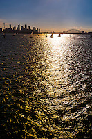 Sydney Harbor, Sydney, New South Wales, Australia