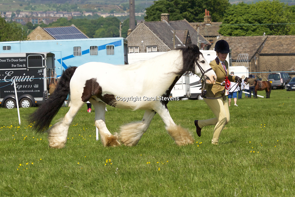 Calderdale Saddle Club<br /> Norland Show 27 May 2018