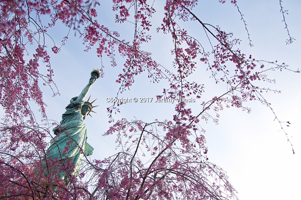 Framed by cherry blossoms, the uncanny replica of the Statue of Liberty in Odaiba stands at roughly 40 feet tall, about 1/7th the size of its New York counterpart. It was erected in 1998 to pay tribute to Japan&rsquo;s ties with France.<br />
