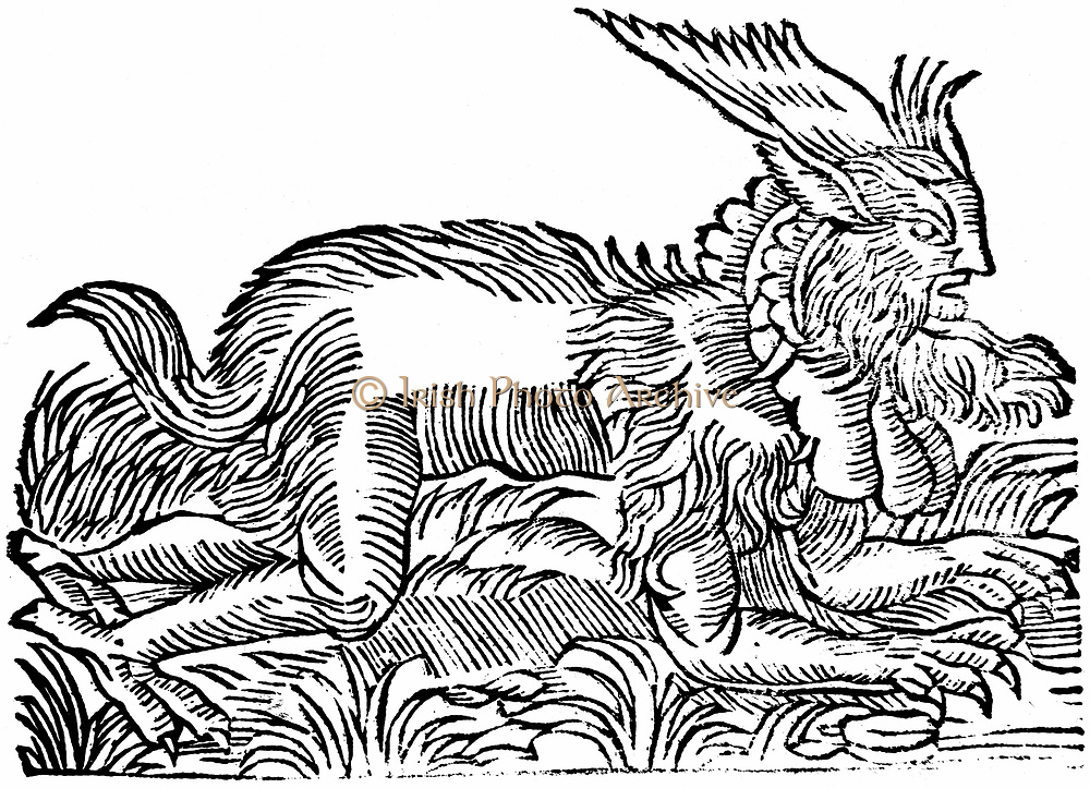 Lycanthropy: Forest demon captured Germany 1531 and said to inhabit forests round Salzburg & Hamburg. Perhaps witch wearing uncured skin - primitive rite which could have given rise to were-wolf legend. Woodcut of 1669 from edition of Gesner 'Historiae animalum'