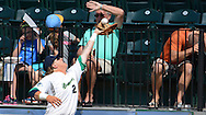 Fans shield themselves as Bravehearts first baseman  Mark DeYoung catches a fly for an out in foul territory.