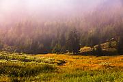 Surroundings of Yagodina village in Rhodope Mountains