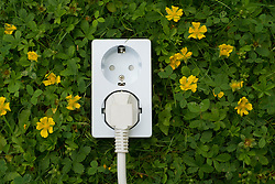 Electric socket on grass concept of green and clean energy and electrical power