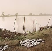 A fish farm outside Kolkata.