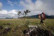 """AUYANTEPUY, VENEZUELA. Porteador Pemon llevando  parte de la carga en su Guayare. El Auyantepuy es el mayor de los tepuis del Parque Nacional Canaima. En sus 700 kms2 alberga el salto angel o conocido por lengua indígena Pemon como """"Kerepacupai Vena; es la caída de agua más grande del mundo con sus 979 metros de altura. (Ramon lepage /Orinoquiaphoto/LatinContent/Getty Images)"""