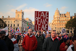 © Licensed to London News Pictures. 31/10/2019. London, UK. Anti-Brexit protesters gather in Parliament Square on what would have been the United Kingdom's last day as a member of the European Union. The date of Brexit has been moved to January 31, 2020 after MPs failed to pass Prime Minister Boris Johnson's withdrawal agreement. Photo credit: Rob Pinney/LNP