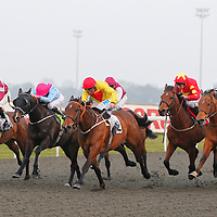 Kempton 18th March