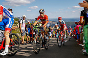 Vincenzo Nibali (ITA, Bahrain Merida) during the 73th Edition of the 2018 Tour of Spain, Vuelta Espana 2018, Stage 13 cycling race, Candas Carreno - La Camperona 174,8 km on September 7, 2018 in Spain - Photo Luca Bettini / BettiniPhoto / ProSportsImages / DPPI