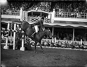 04/08/1960<br /> 08/04/1960<br /> 04 August 1960<br /> R.D.S Horse Show Dublin (Thursday). Mr Seamus Hayes on &quot;Kilbrack&quot;.