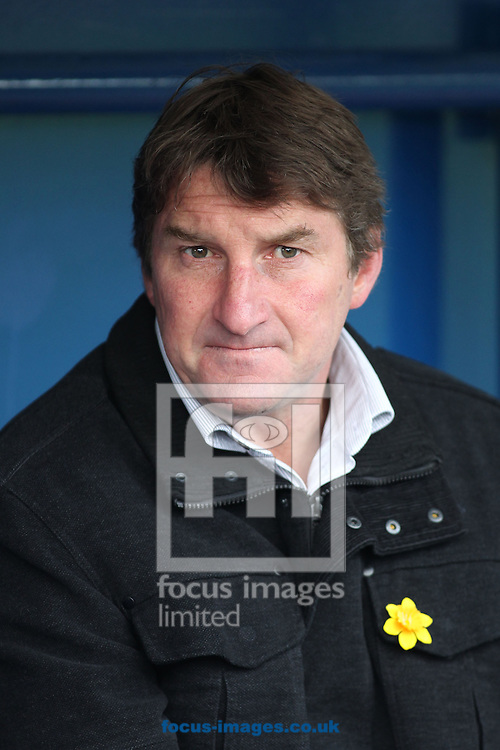 Picture by Michael Sedgwick/Focus Images Ltd +44 7900 363072.29/03/2013.Tony Smith, Warrington Wolves Head Coach prior to the Super League match against Widnes Vikings at the Stobart Stadium Halton, Widnes.