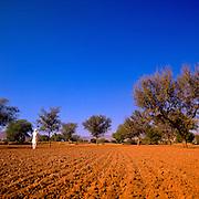Siek man in white standing in a field of red earth