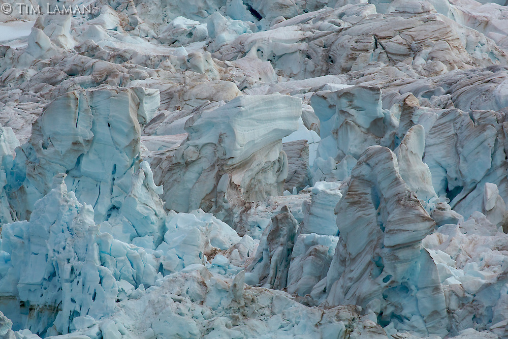 Glacier face.  Bay just west of Point Wild, Elephant Island.
