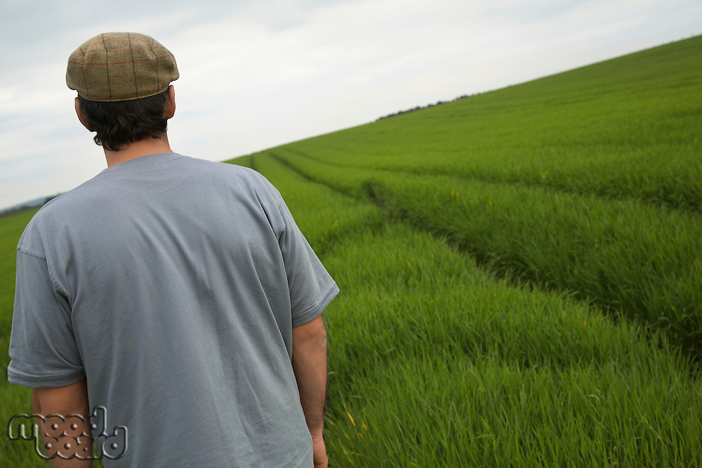 Man standing in field back view