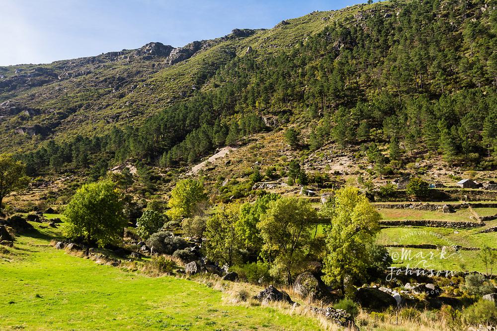 Bucolic farm scene outside Mantaigas, Parque Serra da Estrela, Portugal
