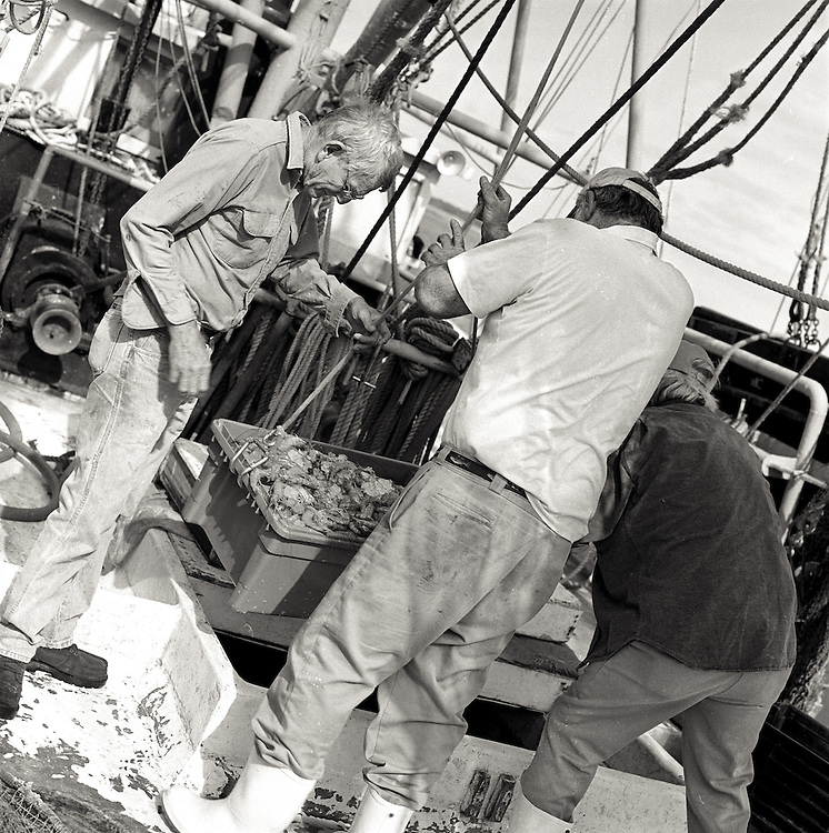 Unloading The Catch, 2005