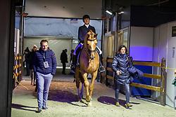 Devroe Jeroen, BEL, Hyrano<br /> Jumping Mechelen 2019<br /> © Hippo Foto - Sharon Vandeput<br />  29/12/2019