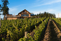 The Owner's home at Blue Grouse Winery in the Cowichan on Vancouver Island, BC, is renovated in a contemporary farmhouse style.