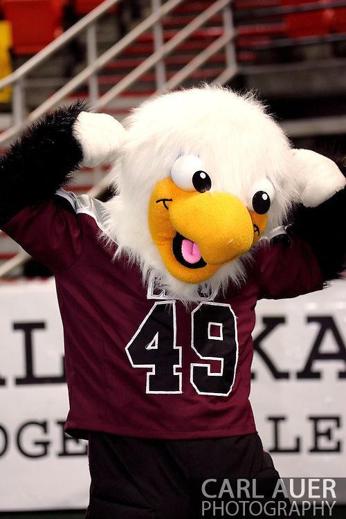 6-28-2007: Anchorage, AK - At halftime, the Alaska Wild mascot shows off his muscles but it was not enough as his  Alaska Wild would go on to a 47 to 53 loss to the CenTex Barracudas at the Sullivan Arena...
