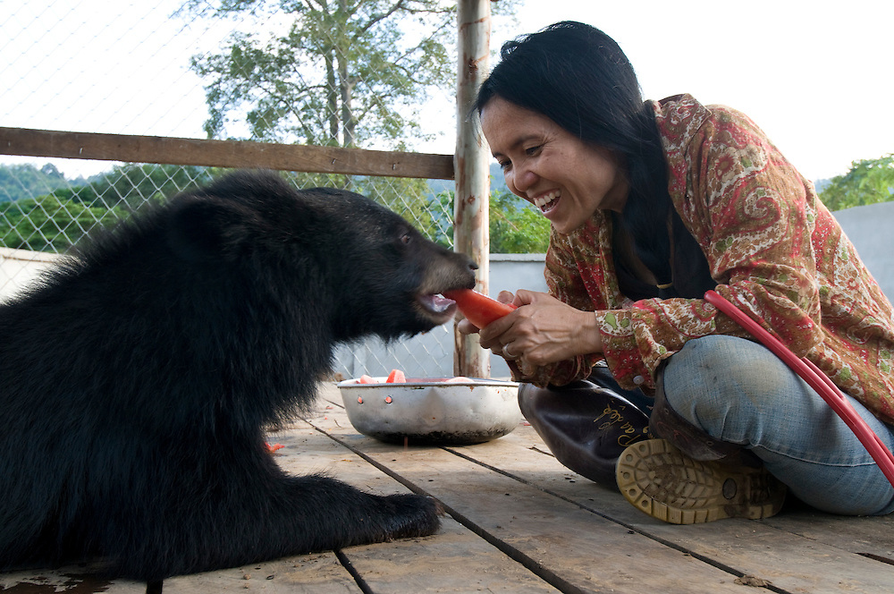 "Sangduen ""Lek"" Chailert with a baby bear she rescued at the Elephant Nature Park near Chiang Mai, Thailand.  Sangduen ""Lek"" Chailert founded the park as a sanctuary and rescue centre for elephants.  The park currently has 32 elephants sponsored and supported by volunteers from all over the world."