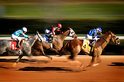 Arkansas Democrat-Gazette/BENJAMIN KRAIN --1/17/13--<br /> Channeling, The Mallard Man and Strong Hold race towards the finish during the second race at Oaklawn on Thursday. Thursday was the first day of racing since a storm washed out part of the track last Friday night.